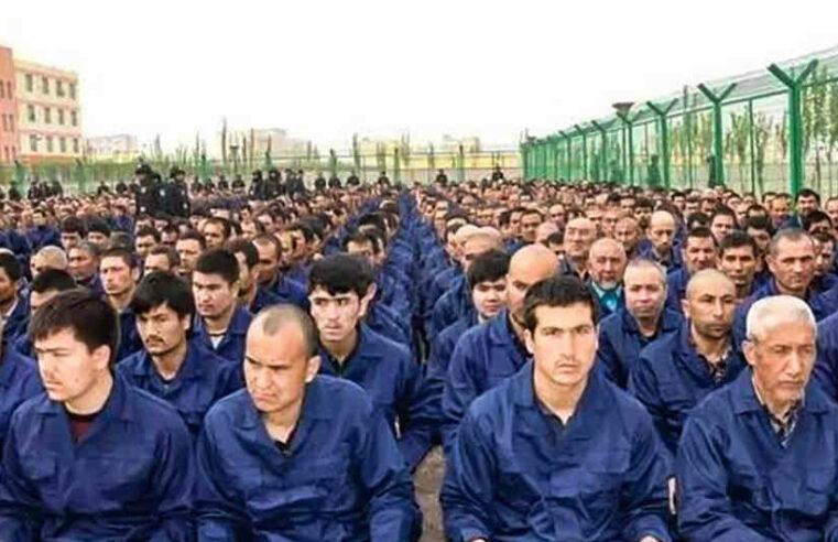 """Xinjiang y la caída de la tasa de natalidad uigur. Réplica a los """"izquierdistas"""" proautoritarios"""